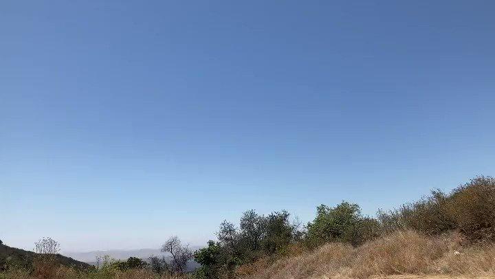 🙌🏽📷🌎 #daisyandradephotography #city #shadows #photographylovers #photographylife #travelphotography #colorful #California #view #Beautiful #nature #outdooradventure #trendy #abc7eyewitness #abc7community #vistala #naturephotography #photographyeveryday #newsphotographer
