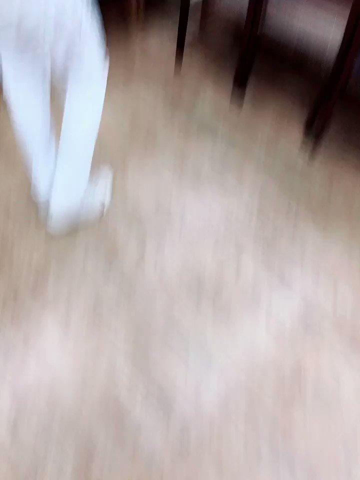 [에릭] 추억의 블룸2 🌸