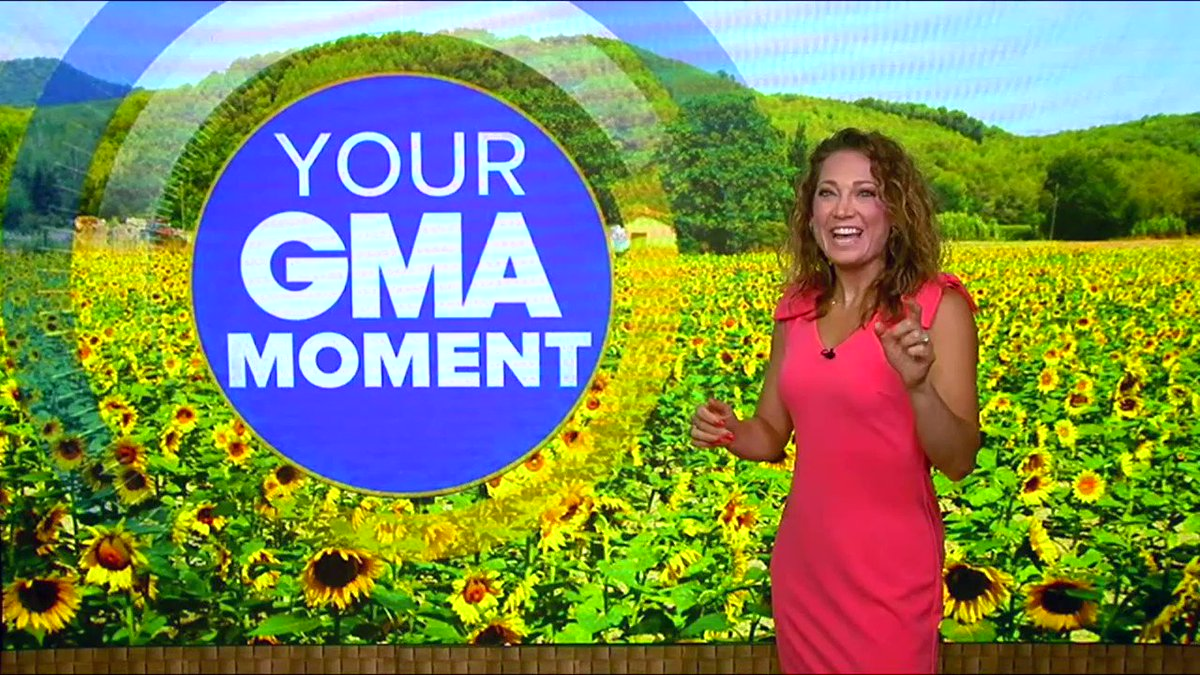 YOU are enrichment for our animals! Many animals noticed our lack of guests when we closed. Some, like gorilla Kindi, appear to enjoy interacting with guests now that they have returned. Watch this great clip from  @GMA  of 6-year-old visitor Morgan and gorilla Kindi interacting.