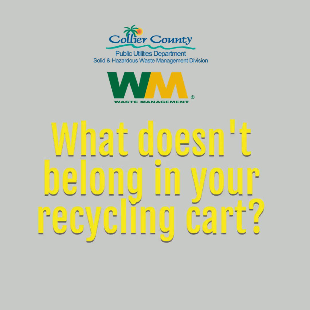 Plastic bags never go in the recycling container; they damage recycling equipment.