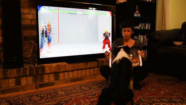 Here we have a dog doing the actual full Quarter Circle on an arcade stick to perform a Fireball in Street Fighter.   The way this is done is impressive because the dog used buffering by holding the punch and perform the QCF perfectly. simply AMAZING!!! https://t.co/ccL3KdP26O