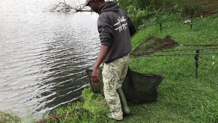 Ep<b>Iso</b>de 2 done  #carpfishing #specimen #fishinglife #carp #carpangler #fishinganglers https:/