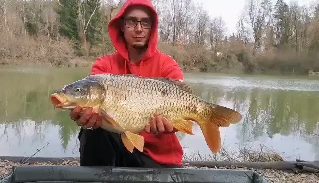 Great success!! 💪💪💪  #carp #carpfishing #angling #fishing #<b>Ribolov</b> #fishinglife http