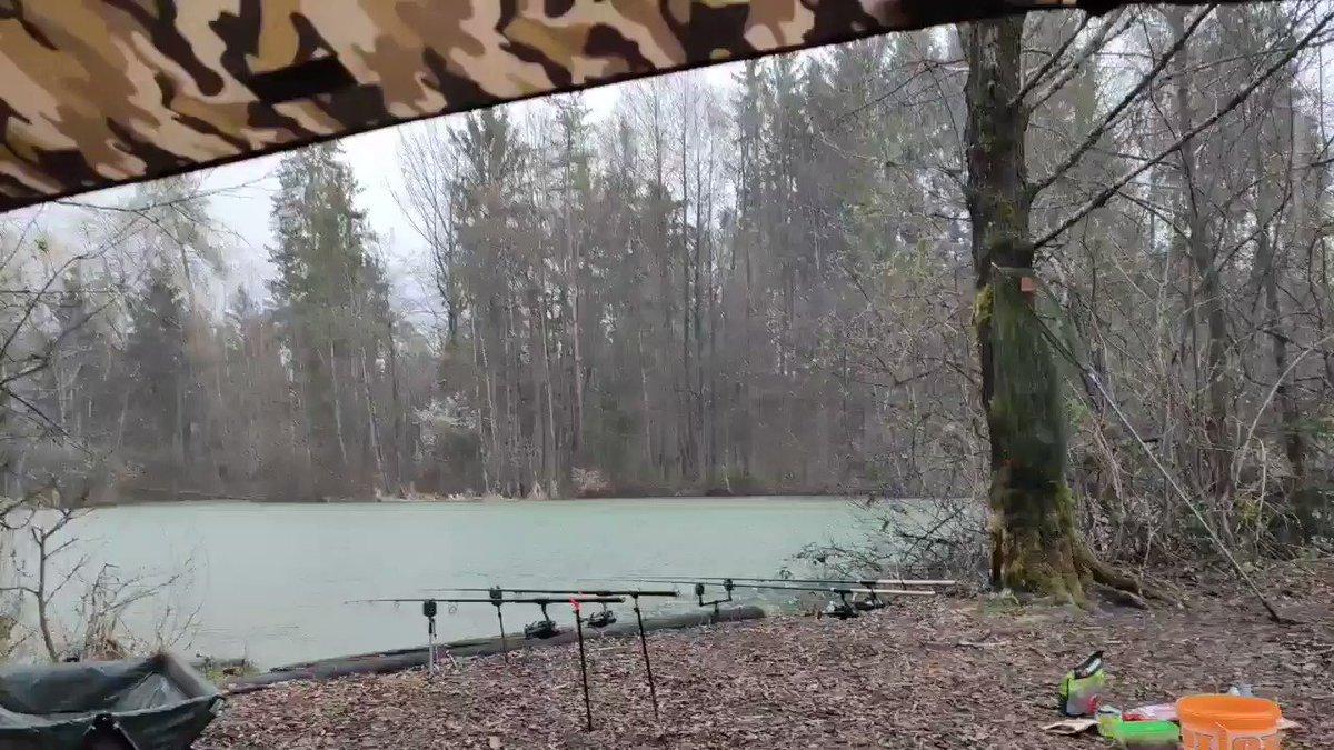 All weather #carp fishing 😆😆😁  #fishing #<b>Angling</b> #carpfishing #ribolov #slovenia htt