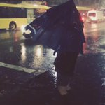 The look on the face under this umbrella must be joyous... ☔️ #sydney #SydneyRain #SydneyWeather http://t.co/5G817dLgh6