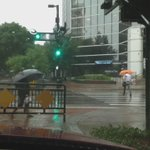 Lots of umbrellas in downtown #Tampa today. #Wtsp #10Weather http://t.co/pcXInDoiho