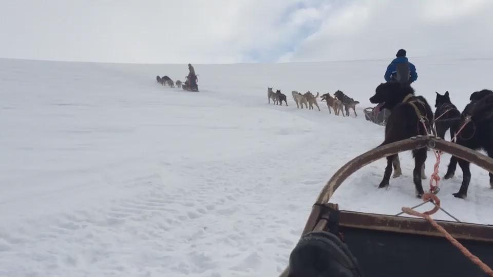Conquistata la fiducia dei cani, si parte! Non è una passeggiata, ma tutta questa bellezza va guadagnata. #Norvegia http://t.co/pk0REwhO7v