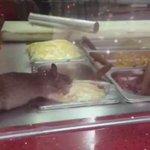 فأر داخل مطعم لندن - المدينة المنورة  http://t.co/TMdwqkbseR