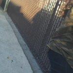 Otro video de Justin hablando con fans en Los Angeles, CA. (1 de Agosto) http://t.co/q0vmMIS8kF #MTVHottest Justin Bieber