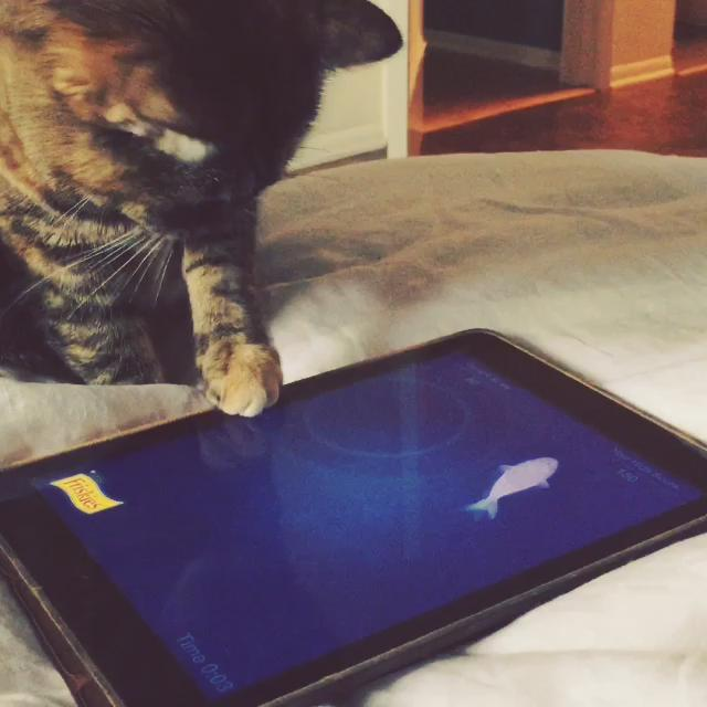 """""""Any sufficiently advanced technology is indistinguishable from magic."""" -Arthur C Clarke on cats & iPads http://t.co/Wep3oYpxIz"""