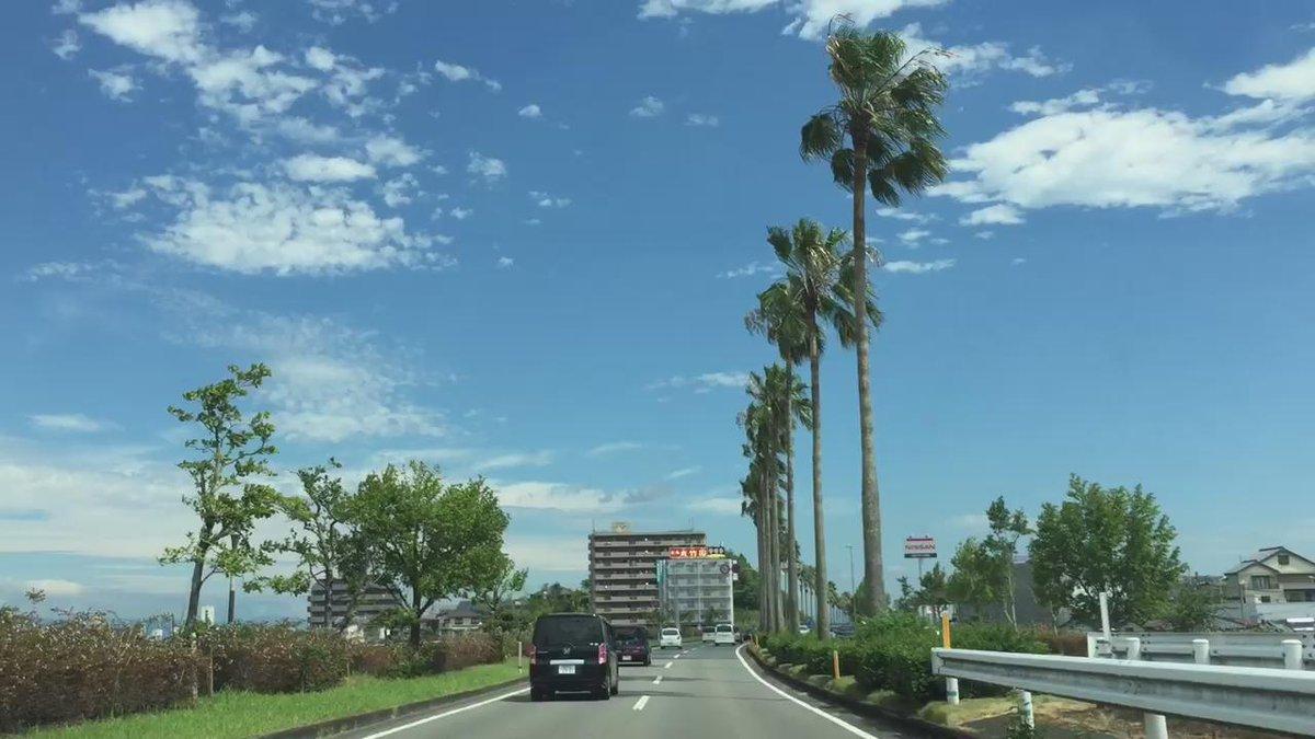 宮崎はめちゃめちゃいい天気でした。 http://t.co/lDLv05B588