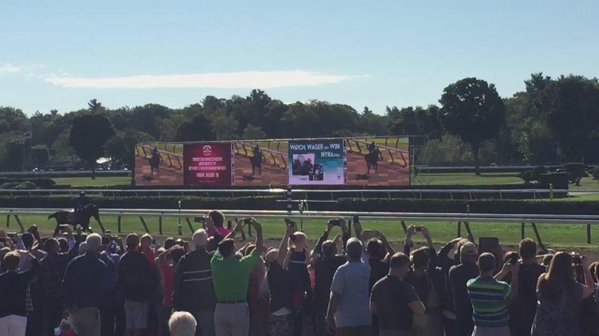Triple Crown winner #AmercianPharoah gallops past the historic Saratoga grandstand #Pharoahtoga http://t.co/CvucaGKSKc