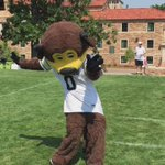 Want to dance with @Chipthebuffalo? Hes at Farrand Fest! #CUBoulder http://t.co/b6V2A57BEK