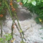 Good advice from @nsrescue! Pls use caution near NS creeks which are running very high due to ongoing rainfall. http://t.co/LKVWsLyZVz