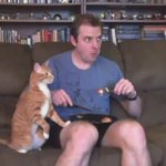 """""""@blxcknicotine: Trying to eat with a cat around (cat owner can relate this) http://t.co/kQDzuw8jrP"""" I DONT MIND"""