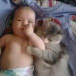 Manjanya kucing nii ???? http://t.co/zmQnl9yKnx