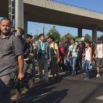 A thousand migrants decide to walk the 200km to Austrian border @ONENewsNZ http://t.co/KbbwEArfWj