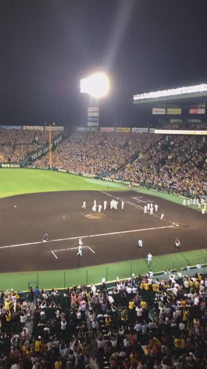 http://twitter.com/hamaguchijunko/status/641593649571106817/video/1
