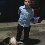 #TragediaElCambray   Nelson Cifuentes, 12 años, pide ayuda para encontrar hogar para su perro Bruss. Vía @AOrozco_PL http://t.co/vYeGeFCbkN