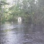 Edisto River flooding in Colleton County today. #SCFlood http://t.co/hUEyOrFABe