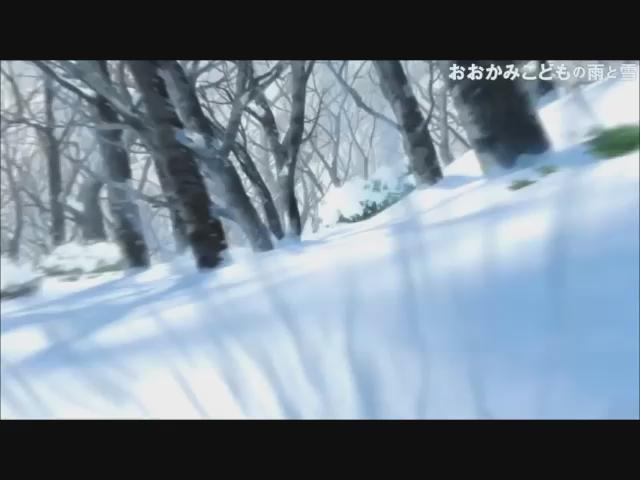 """おおかみこどもの雨と雪(スタジオ地図)「人間とおおかみ」の二つの顔を持つ""""おおかみこども""""の母となった女性と子供達の成長"""