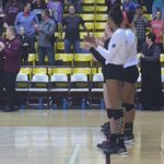 And the rest of the starters. @tatumm14 @LilyJ17 @ashley_ophoven #MSUBears #MVCVB https://t.co/PWCu3sqr8c