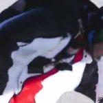 #فيديو .. مظليون يهنئون #الإمارات بـ#اليوم_الوطني44 #مصدرك_الأول https://t.co/8fAfCSEBAk