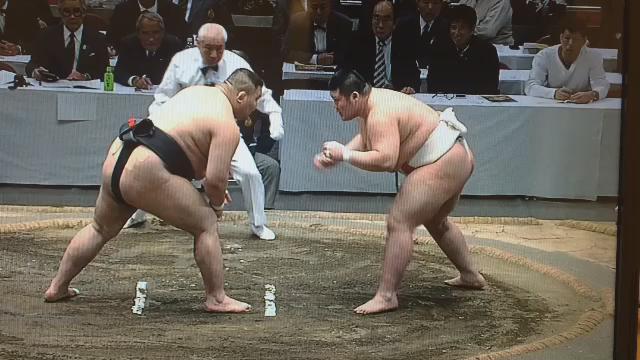 「頭で行った相撲」 なんだこの相撲は #全日本相撲選手権 #トゥルボルド https://t.co/ANeRZCboEt