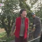 Song family getting free persimmon from the ahjumma #AlwaysWithSONGTRIPLETS https://t.co/cIBcUIKn62