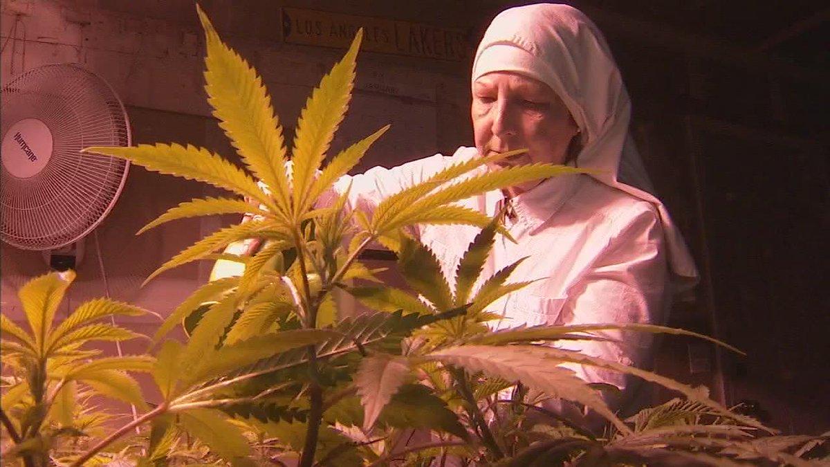 "Merced ""nuns"" fight to keep their marijuana based business --> https://t.co/mFCWsPtsoD https://t.co/4EZ98qB8Vu"