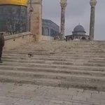 المسجد الأقصى صباح اليوم. تصوير: نهاد زغي https://t.co/aO6GSZjuh9