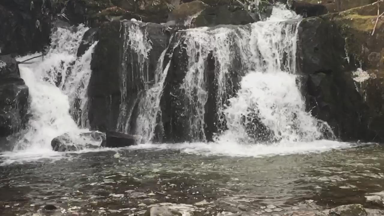 The power a a waterfall in slo-motion is just fascinating to me! #hiking #GSMNP #IndianFlatFalls https://t.co/S9YQH1ugIg