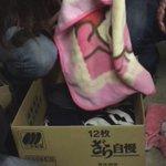 《拡散希望RT》福島県会津若松市 会津鉄道・南若松駅に、子猫が20匹捨てられていました。飼い主を探しています。お願いします!たくさんの方々に拡散してください!ネコちゃんの命を助けてください! https://t.co/QNqxKsGgoV