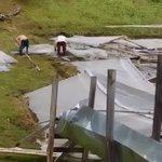 Pérdidas económicas registran productores en Tierras Altas ^esperan ayuda y no promesas como hace un año @TReporta https://t.co/QfYH8qH4Cu