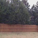 Let it snow, let it snow, let it SNOW!! #yeahTHATgreenville @wyffnews4 @weatherchannel https://t.co/RGbeCNzfrA