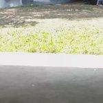 {VIDEO} Grabaciones accidente #FrenteAlMismoRostro ???????? @Anboy88 @sebastianrulli https://t.co/gjyXMCEAre vía @TereDzib1