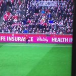 Man gets chased by dog at the Emirates. #SuperSunday https://t.co/MBYxguSpyc