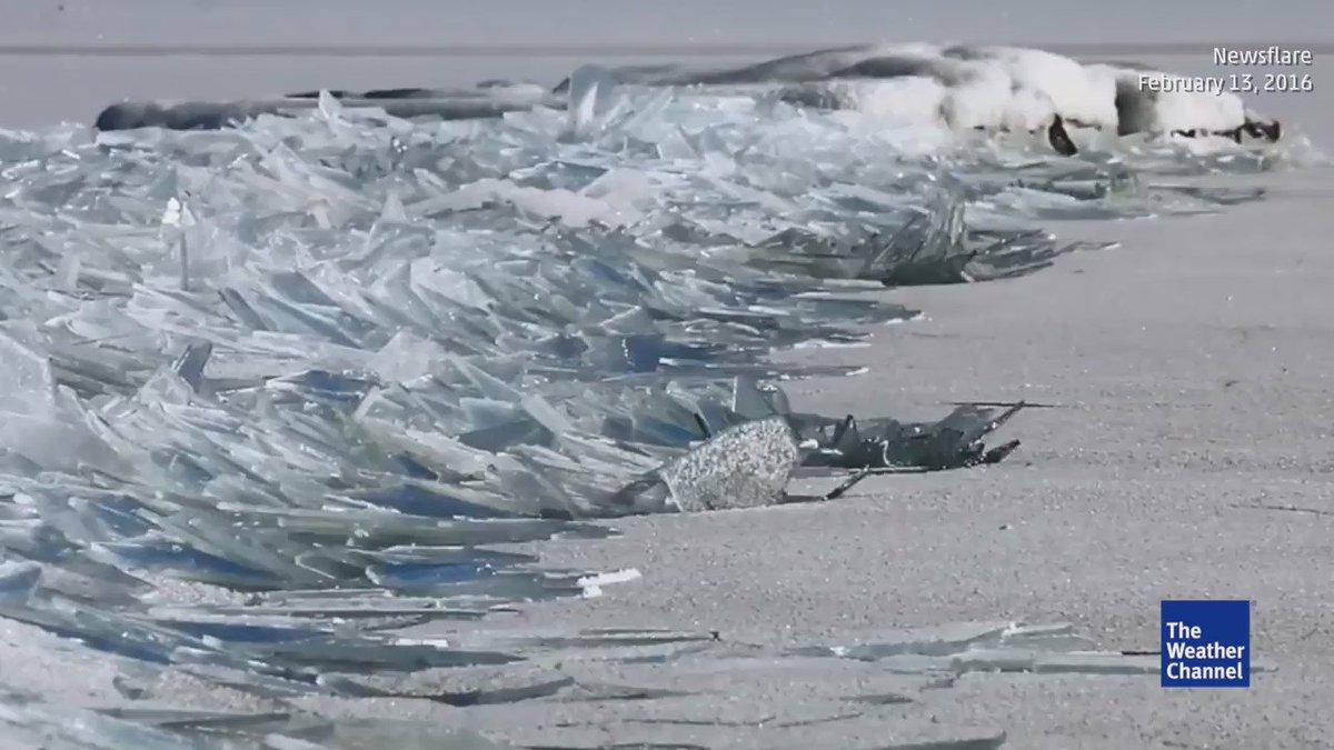 米ミネソタ州のスペリオル湖の湖岸には無数の板状の氷が打ち寄せられており、印象的な動画が撮影されている。例年よりも暖かい冬のために氷が薄く、それが割れて板ガラスのようになって湖岸に漂着している。via @weatherchannel  https://t.co/j9ccvMRsgU