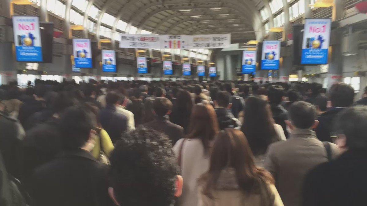 朝の品川駅はすごい。集団行動のような、一種アートだ。 その川の流れに巻き込まれるのは、案外気持ちいい。 https://t.co/D6q8XzVamY