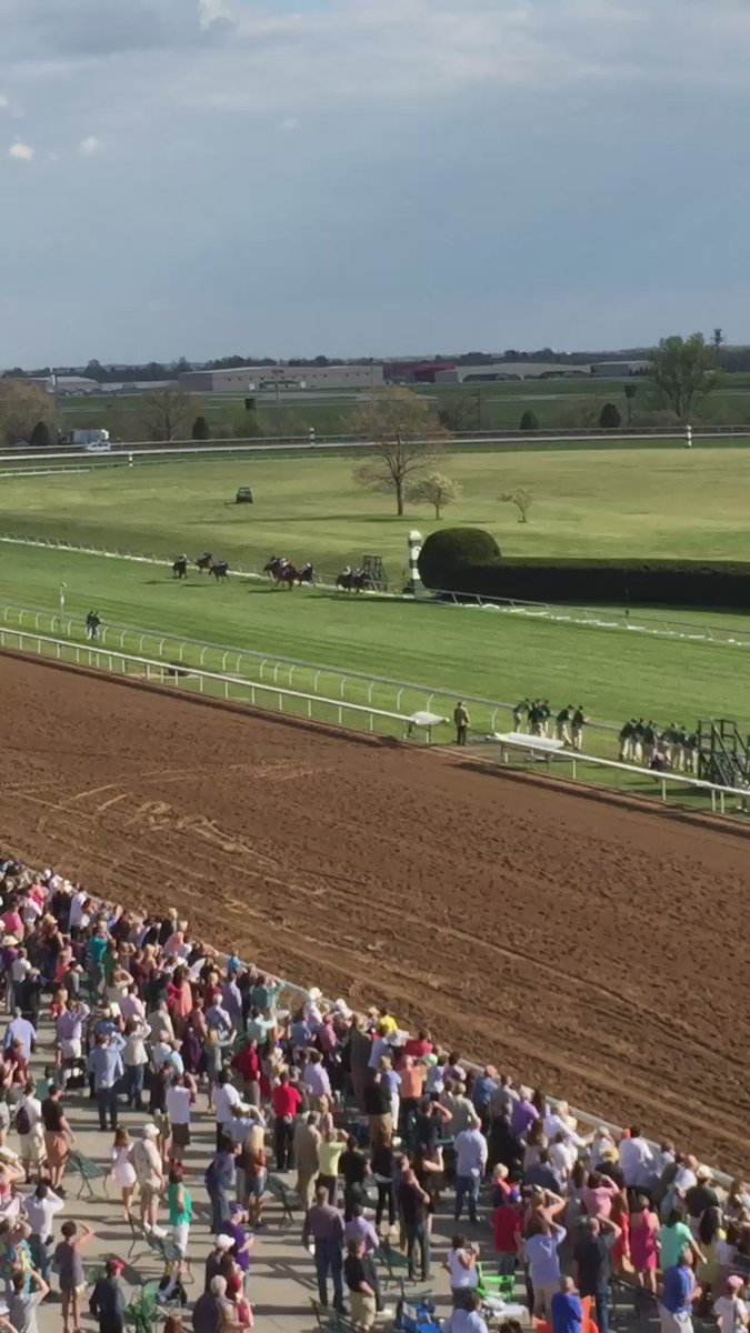 Miss Temple City beats the boys, becoming the first filly to win the @MakersMark 46 Mile (G1) at #Keeneland https://t.co/V1tDwZljuG