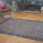 Large hail in @NorthCharleston! Severe Thunderstorm Warning until 6 pm. Video: Ed Campbell. #chswx https://t.co/3c3wH7AT8w