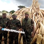Supporting @kwskenya by providing fuel for the World's largest #IvoryBurn .Our wildlife our heritage #WorthMoreAlive https://t.co/WDGpEEe6s4