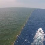The Mississippi River meets the Gulf of Mexico. The two bodies of water never mix with each other. https://t.co/oq0FEmyzpE