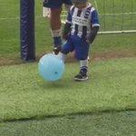 @beramangela @OfficialBHAFC little baby Pirlo #bhafc https://t.co/JgjtTtCnHu