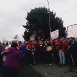 #ChiloeEnCrisis Pescadores Chilotes con acordeón, guitarra y bombo se toman las calles. https://t.co/gVFEiwPld9 https://t.co/cEo8ffhMxQ