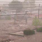 #SJR Dren a tope en Lomas de San Juan. https://t.co/3yDEfjZ5cK