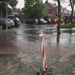 #wateroverlast Enschede: in de varviksweg/sweelinckstraat kun je zwemmen. De ratten zoeken een droge plek op... https://t.co/rg7Sq5eaXp