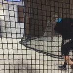 Leon Draisaitl is checking out the #redbulls Academy for a @WarriorHockey Video shoot @Drat_29 @ecrbs https://t.co/eVWa5Eik9b