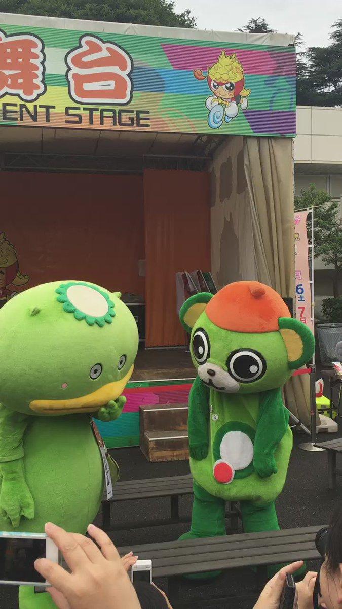 争うカパルとイッちゃん https://t.co/y1uPSRyoXX