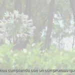 """""""La #CDMX sigue trabajando en el tema del medio ambiente, mejorando el transporte público"""": @ManceraMiguelMX https://t.co/7e9LMVeDHK"""